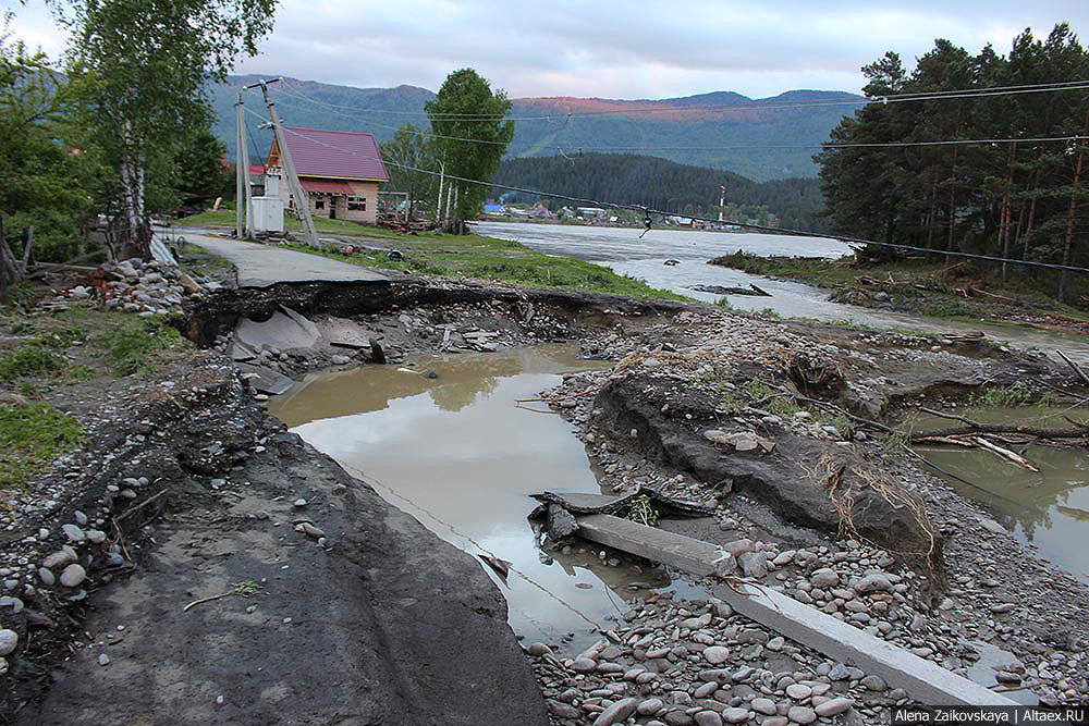 Когда уходит Водяной. Взгляд на последствия наводнения 2014 года на Алтае изнутри.