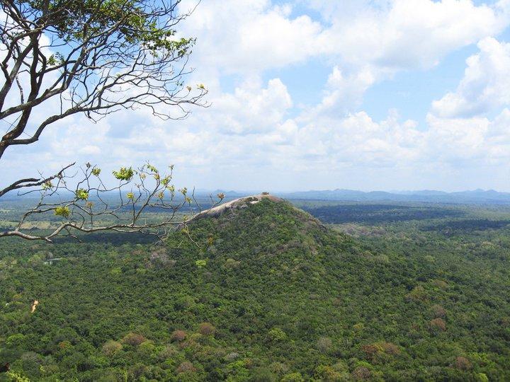 Фотоотдых со Шри-Ланки: чайные плантации, поездка на тук-туке и прелести отдыха в несезон