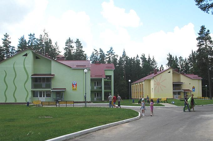 В Зельвенском районе фиктивно работали летние лагеря: дети были, а отдыха - нет