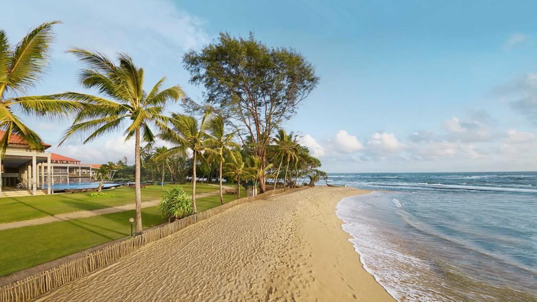 Шри-Ланка ввела временные бесплатные визы для российских туристов, туроператоры почувствовали рост спроса
