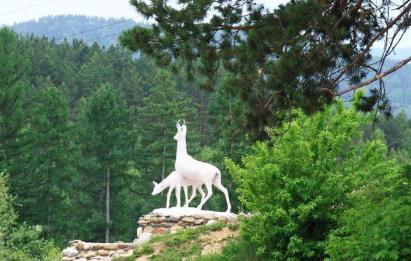 Чем интересны экскурсии в Белокурихе и Алтае