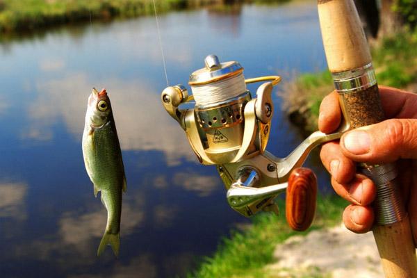Тысячи товаров для фанатов рыбалки