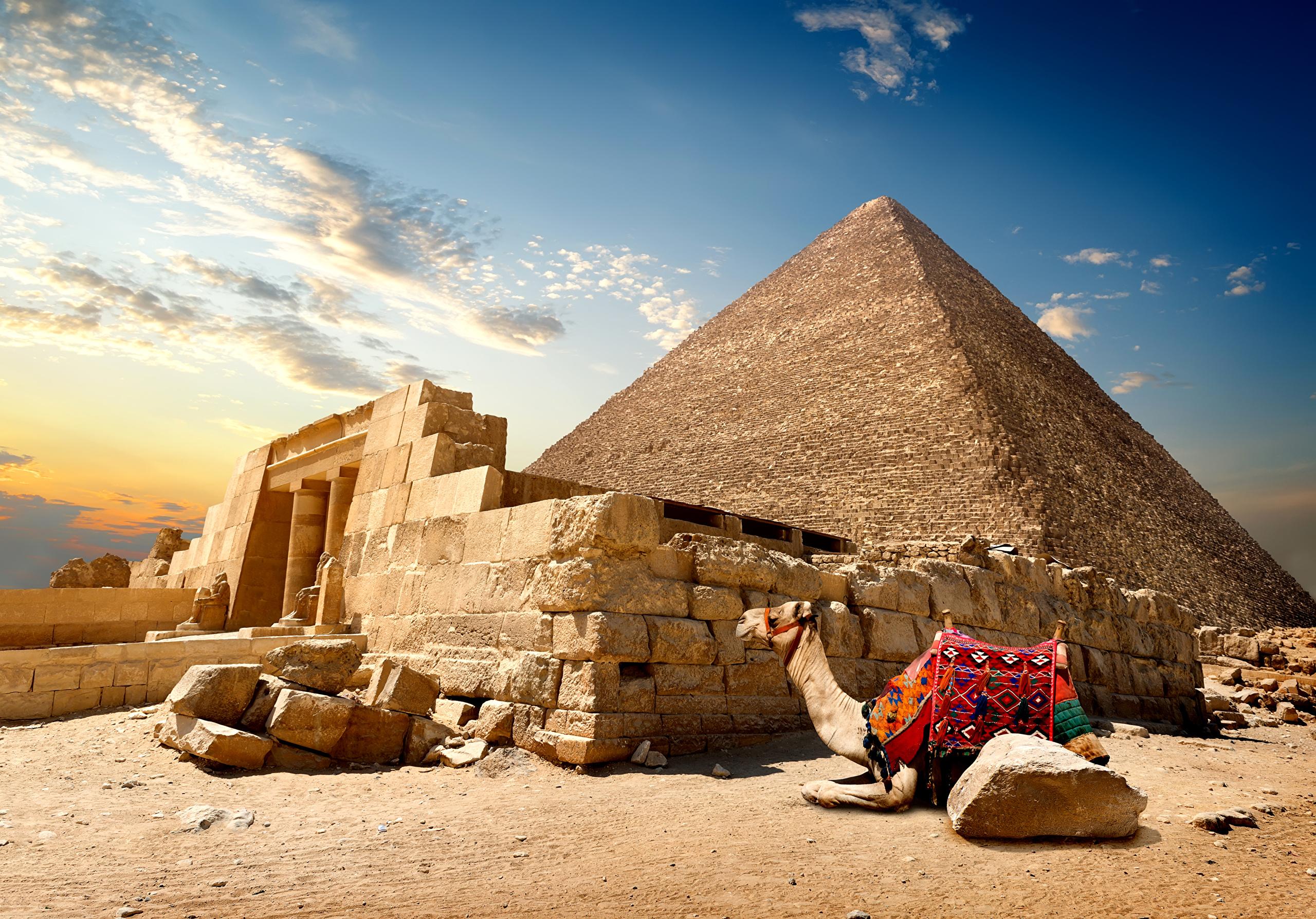 Туры в Египет из Алматы