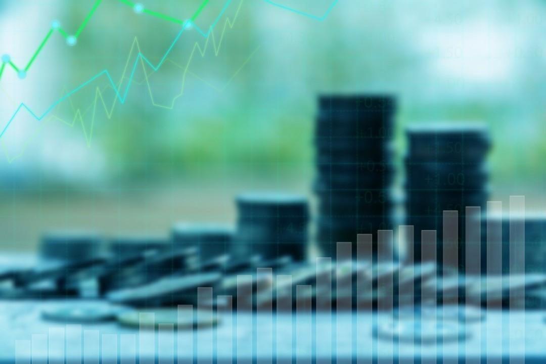 Виды инвестиций с различным капиталом