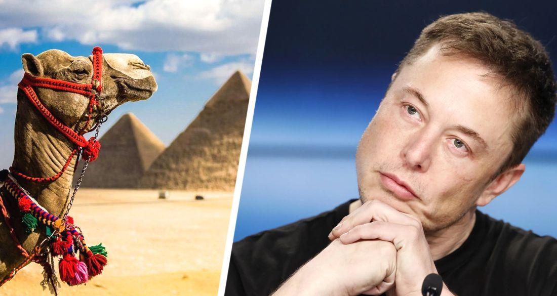 Египет пригласил Илона Маска посетить Великие Пирамиды Гизы