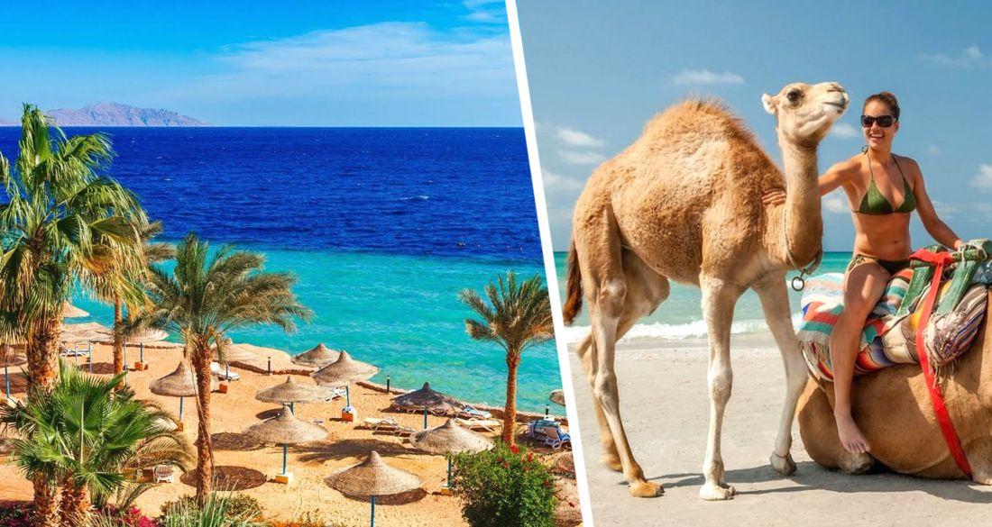 Египет: в Хургаде и Шарм-эль-Шейхе не было ни одного случая Covid-19 с момента возобновления туризма