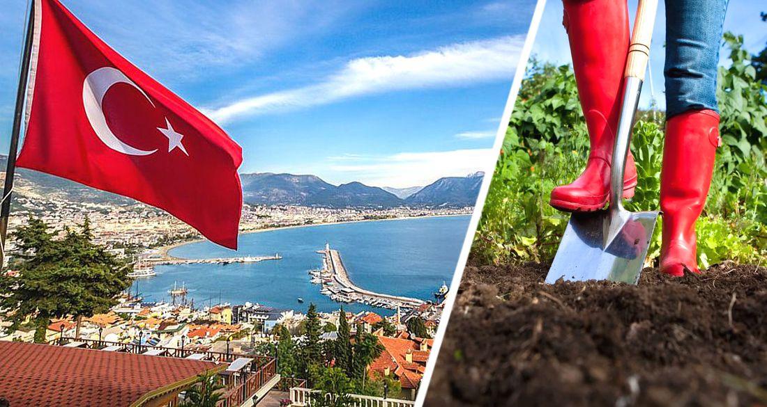 Кто в Турцию, а кто на дачу - как планируют свой отдых россияне в 2021 году