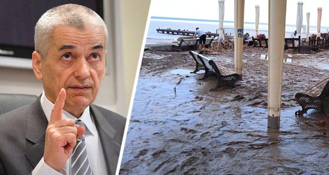 Онищенко предупредил о болезнях, которые можно подхватить в Ялте после потопа