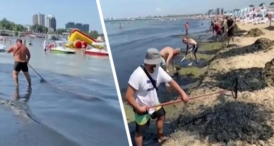 Нефть идет на пляжи Анапы: туристы и дельфины в шоке от экологической катастрофы
